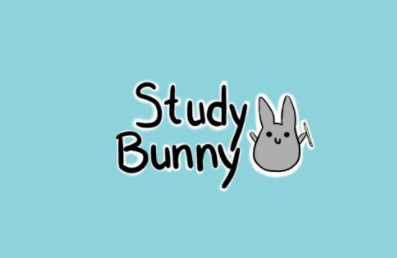 Study Bunny: Focus Timer for PC
